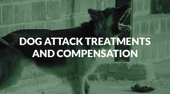 Dog Attack Treatments and Compensation