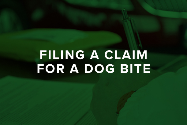 Filing a Claim for a Dog Bite